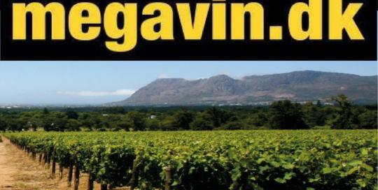 Megavin logo med vinmark